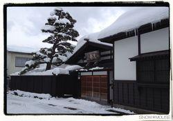 20140118-19yashima02s