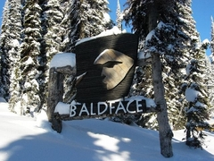 Baldface03s